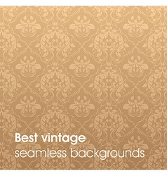 Light Brown Floral Background vector image