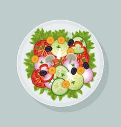 Salad vegetables fresh dish vector