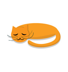 sleeping cat icon cartoon style vector image