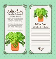 vintage label with adiantum plant vector image