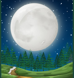 a simple forest night scene vector image
