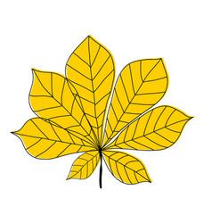 chestnut leaf icon on white background vector image