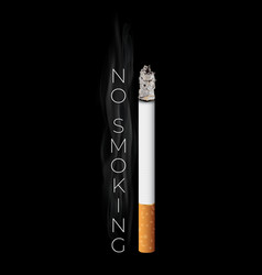 realistic burning cigarette on black vector image