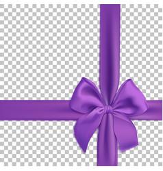Realistic purple bow and ribbon isolated vector