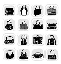 fashion bag vector image