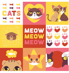 cats heads cute animal faces vector image