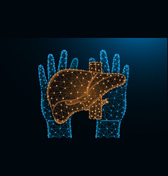 hands and liver low poly design human organ vector image