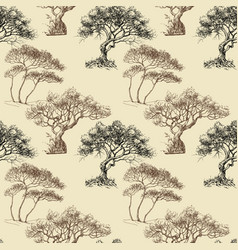 olive trees seamless pattern vector image
