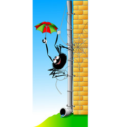 wincy spider vector image