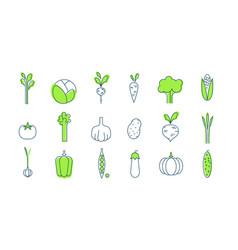 vegetable icons set healthy vegetarian food vector image