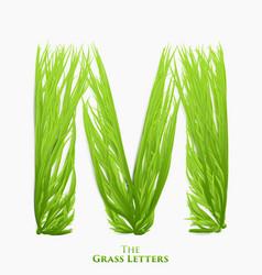 Letter m of juicy grass alphabet green m vector
