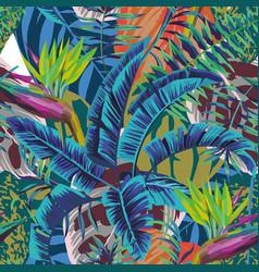 abstract color bird baradise banana leaves vector image