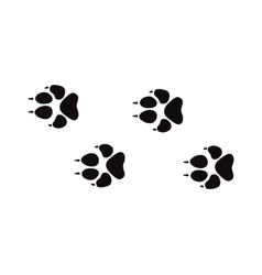Animal foot prints and tracks isolated steps vector image