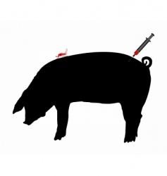 pig immunization vector image