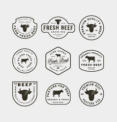 set of premium fresh beef labels vector image