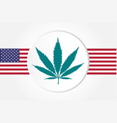marijuana leaf with usas flag flat style vector image