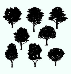 Detail realistic tree silhouette isolated set vector