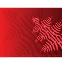 fern leaves vector image