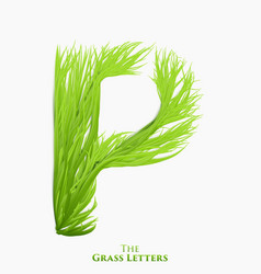 Letter p juicy grass alphabet green p vector