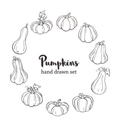 line art pumpkins vector image