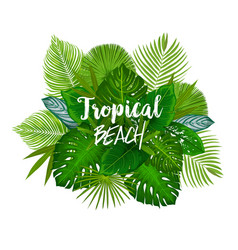 Summer tropical palm and exotic tree leaves poster vector