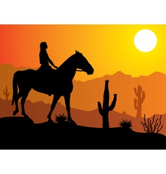 woman on the horse vector image vector image