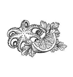 Octopus ink sketch vector