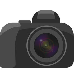 a image of a camera with a clearly vector image