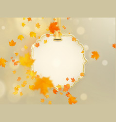 a lot of colourful leaves on light background vector image
