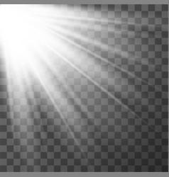 light effect sun rays vector image