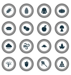 Seasonal icons set with timber weather gourd and vector