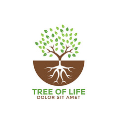 Tree life graphic design template vector