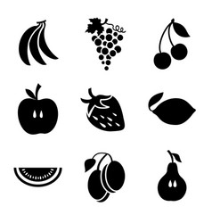 various fruits on a white background vector image