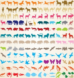 Animals silhouettes collection vector image vector image