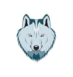 color wolf head logo vector image