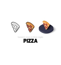 Pizza icon in different style vector image