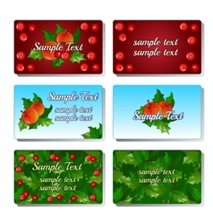 Set of six cards with Holly berry and fruit vector image vector image