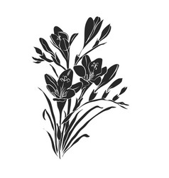 Bouquet of freesiasfreesia silhouette vector