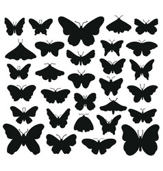 butterflies silhouettes hand drawn butterfly vector image