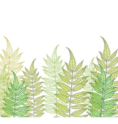 Card with fern vector