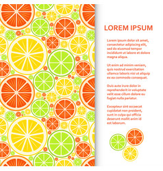 flat poster or banner template with citrus fruits vector image