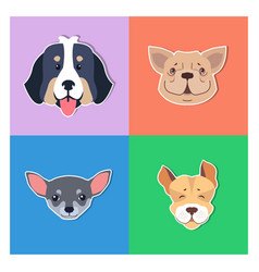 four canine heads of pedigreed dogs doggie concept vector image