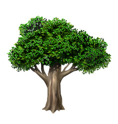 Realistic old large oak tree in vector