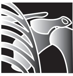 Xray shoulder bones vector image vector image