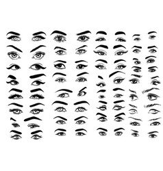 female woman eyes and brows image collection set vector image vector image