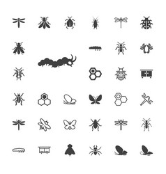 33 insect icons vector
