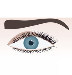 Human blue eye vector image
