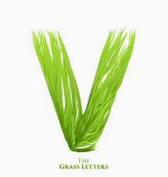 letter v of juicy grass alphabet green v vector image