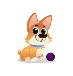 little playful corgi with ball cartoon dog with vector image