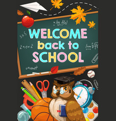 welcome back to school owl and chalkboard vector image